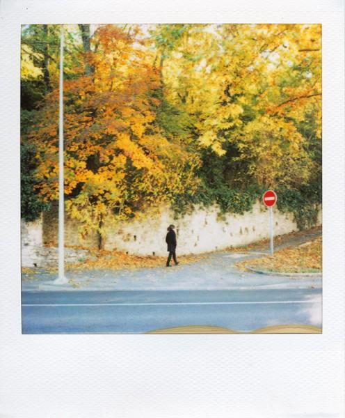 http://www.au-dedans.fr/files/gimgs/th-35_Pola_62.jpg