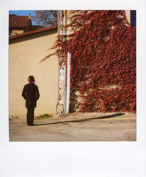 http://www.au-dedans.fr/files/gimgs/th-35_Pola_63.jpg